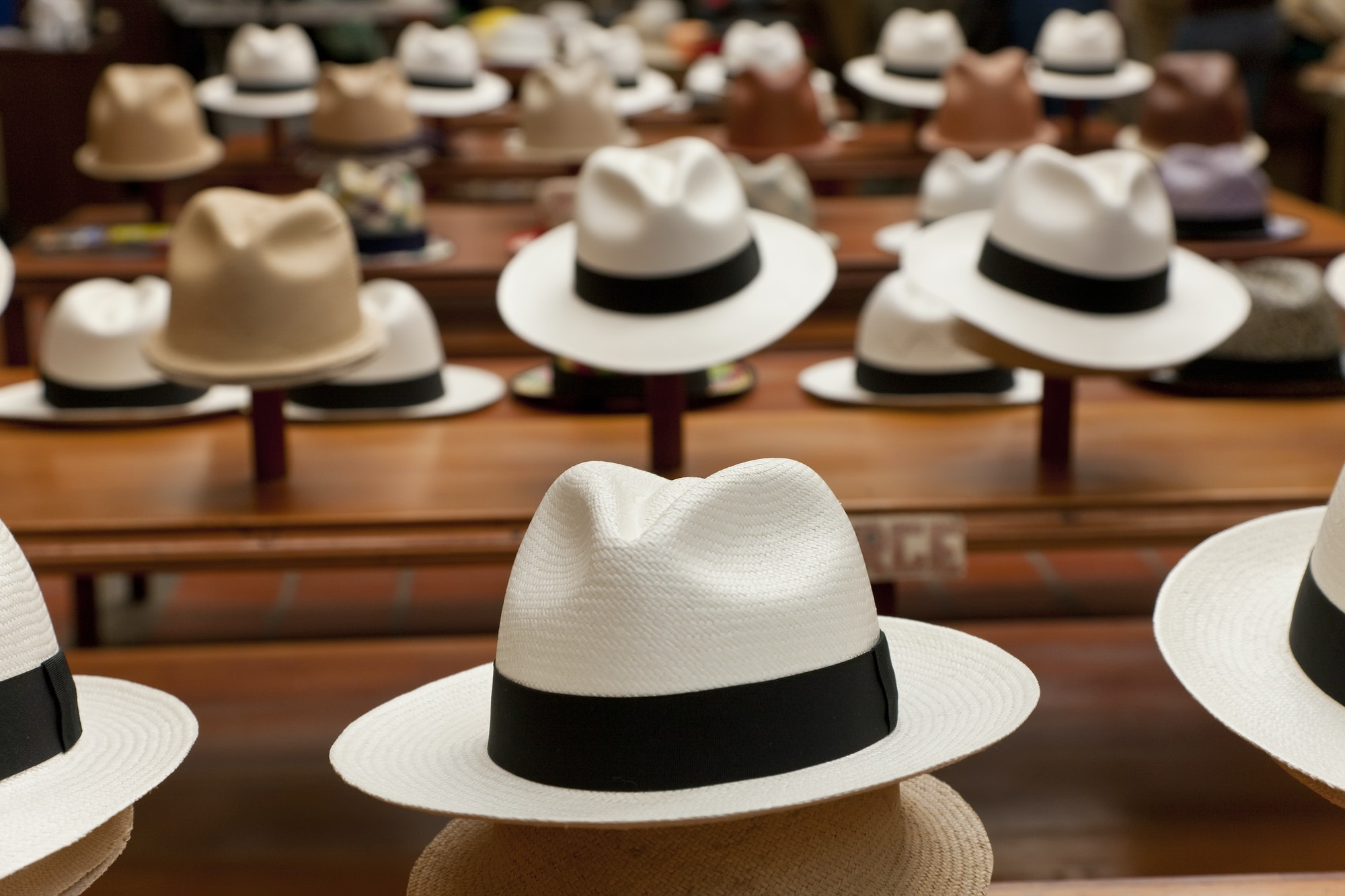 Rows of Panama hats on display in a shop.
